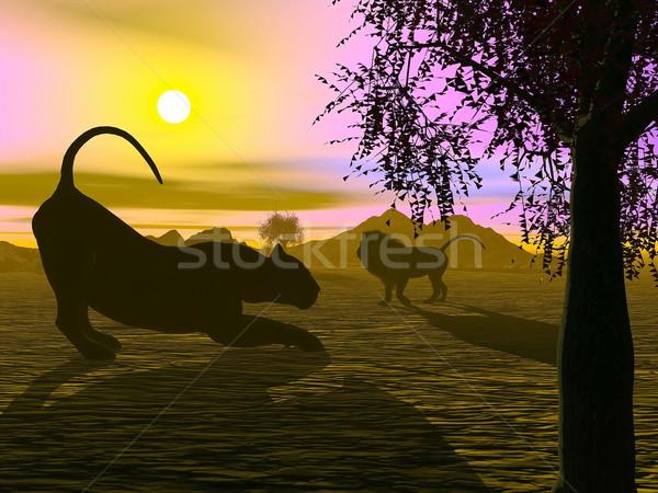 Puesta de sol 3d sombra león sabana cielo Foto stock © Elenarts