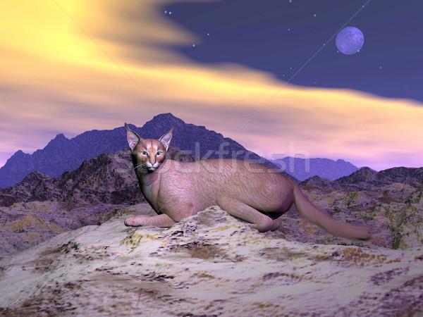 Zdjęcia stock: Pustyni · ryś · 3d · skał · górskich · pełnia · księżyca