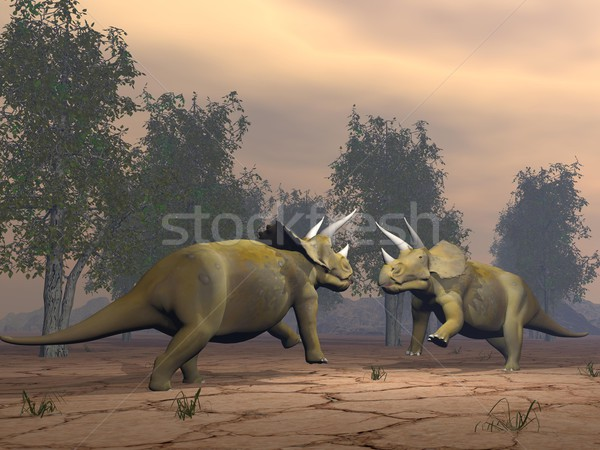 Triceratops dinosaurs fighting - 3D render Stock photo © Elenarts