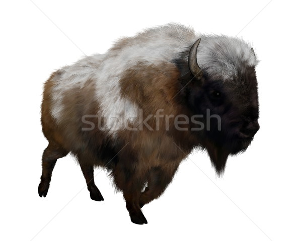 American bison with snow - 3D render Stock photo © Elenarts