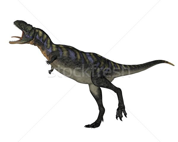 Aucasaurus dinosaur walking roaring - 3D render Stock photo © Elenarts