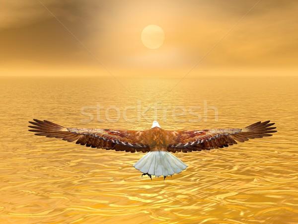 Sas nap 3d render repülés barna naplemente Stock fotó © Elenarts