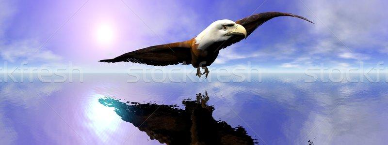 Americano careca Águia 3d render belo voador Foto stock © Elenarts