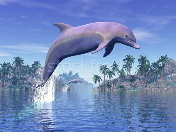 Delfin tropikach 3D skoki ocean Zdjęcia stock © Elenarts