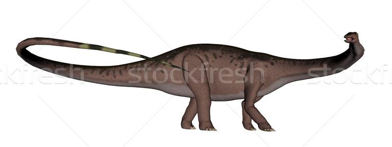 Apatosaurus dinosaur walking - 3D render Stock photo © Elenarts