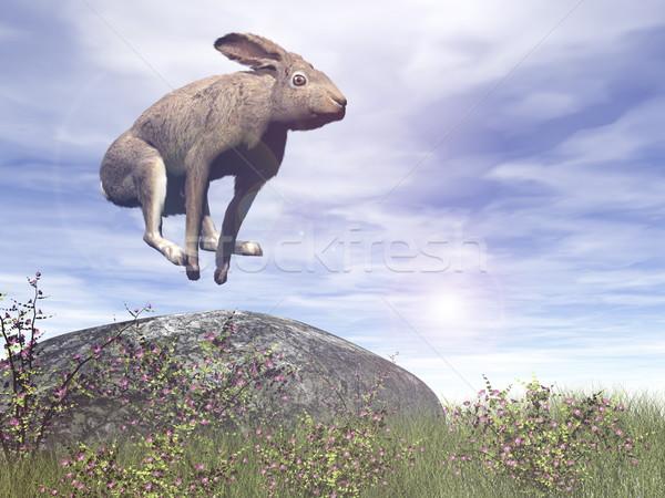 Springen haas 3d render rock gras Stockfoto © Elenarts