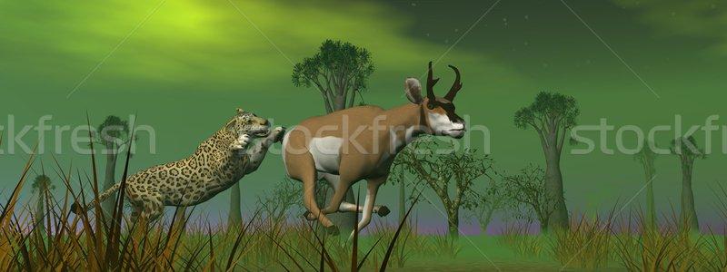 Hunting scene in the nature Stock photo © Elenarts