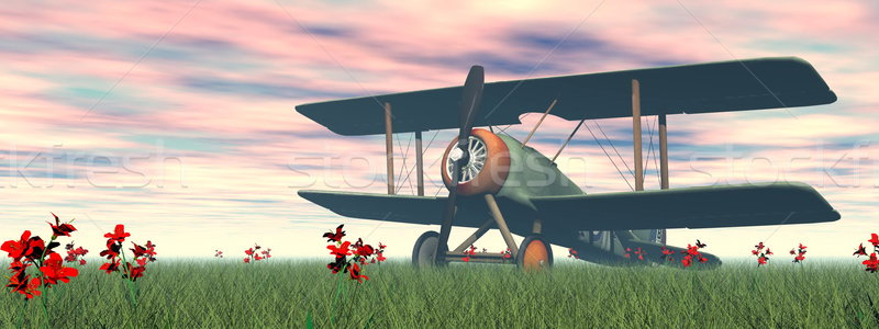 Biplane on the grass - 3D render Stock photo © Elenarts