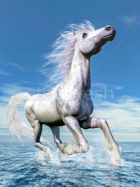 Fehér ló szabadság 3d render fut víz gyönyörű Stock fotó © Elenarts