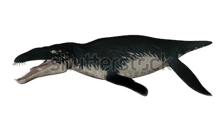 Liopleurodon prehistoric fish - 3D render Stock photo © Elenarts