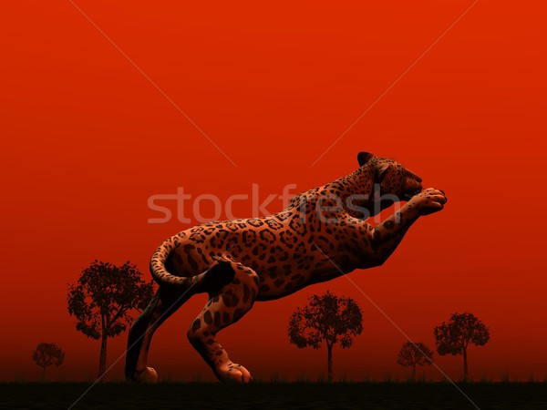 Panthère sautant une savane arbres rouge Photo stock © Elenarts