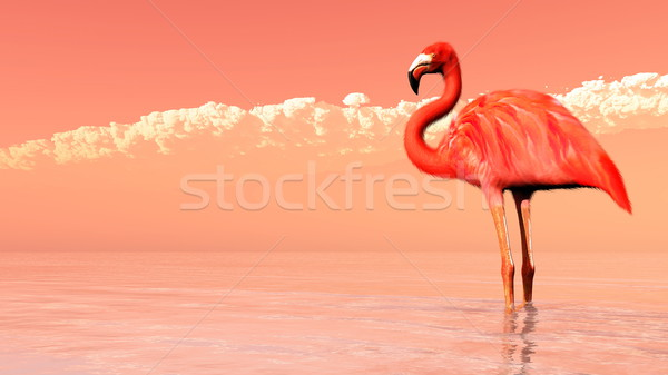 Pink flamingo - 3D render Stock photo © Elenarts
