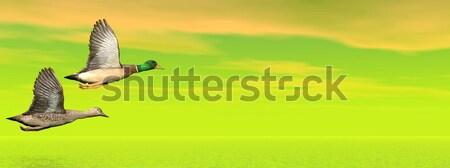Stock fotó: Repülés · 3d · render · férfi · női · pár · repülés