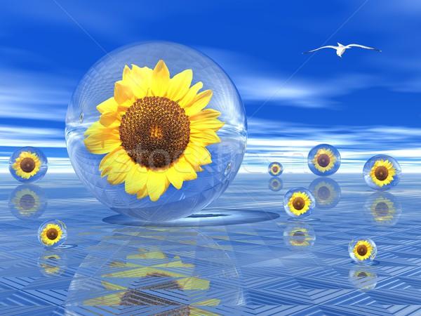 Sunflowers in bubbles Stock photo © Elenarts
