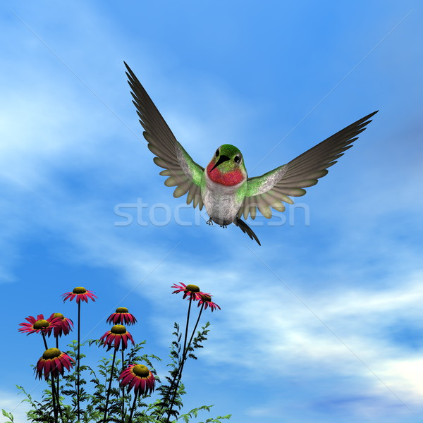 Ruby-throated hummingbird - 3D render Stock photo © Elenarts