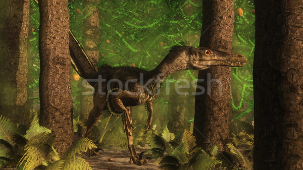 Velociraptor dinosaur in the forest - 3D render Stock photo © Elenarts