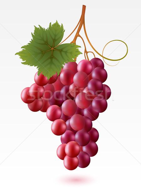 Grapes Stock photo © ElenaShow