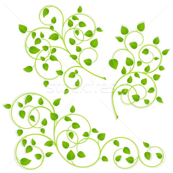 Ensemble vert blanche arbre nature Photo stock © ElenaShow