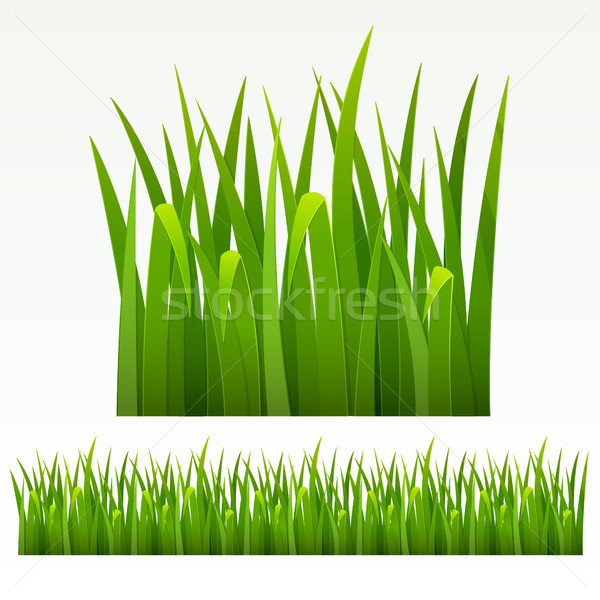 Grass border Stock photo © ElenaShow