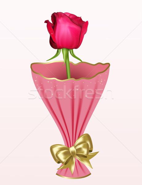 Gül kırmızı gül beyaz çiçek güzellik kırmızı Stok fotoğraf © ElenaShow