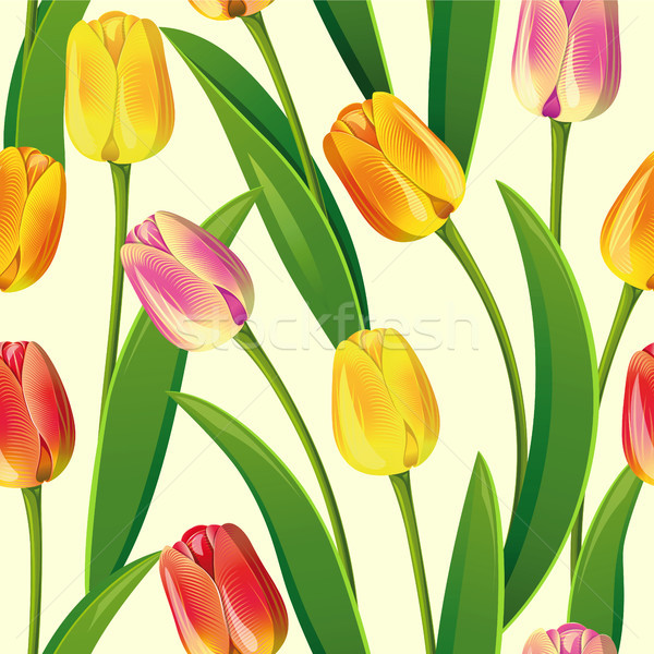 Seamless from tulips Stock photo © ElenaShow