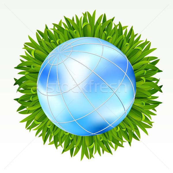 Terra erba erba verde bianco primavera Foto d'archivio © ElenaShow