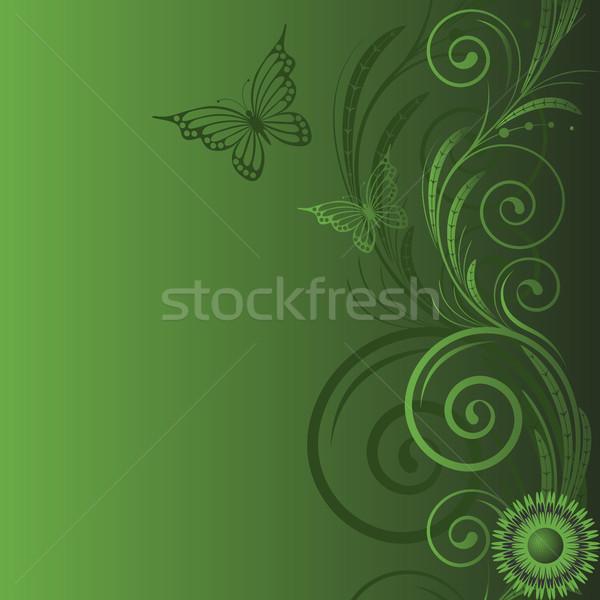 Farfalla verde abstract design foglie Foto d'archivio © ElenaShow