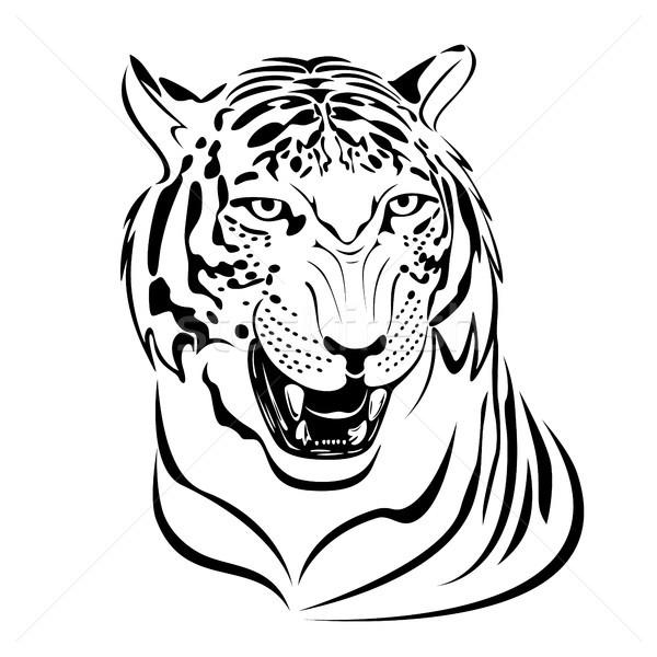Tiger Stock photo © ElenaShow