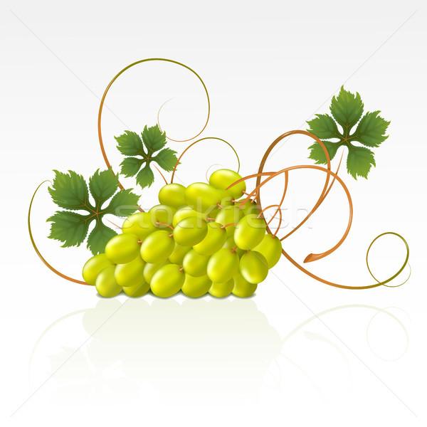 Stok fotoğraf: üzüm · yeşil · yaprakları · beyaz · gıda · yeşil · tatlı