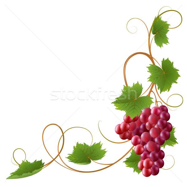 Vid rojo blanco naturaleza frutas marco Foto stock © ElenaShow