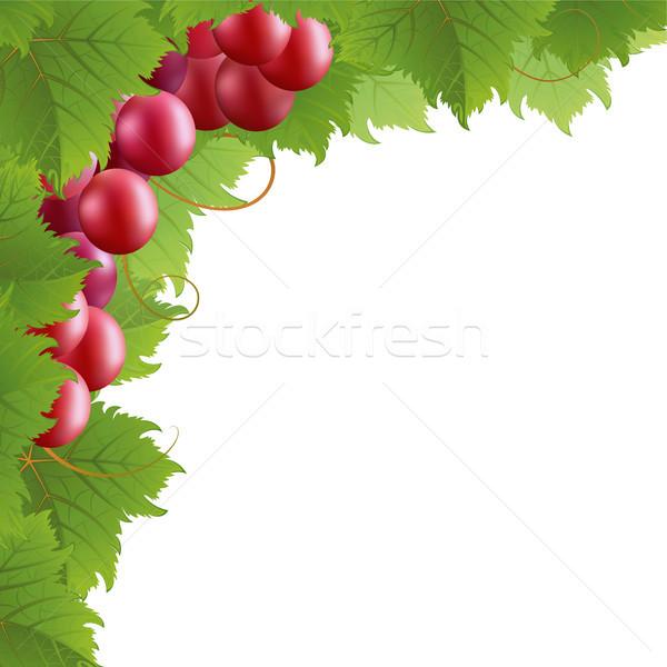 つる 赤 白 自然 フルーツ フレーム ストックフォト © ElenaShow
