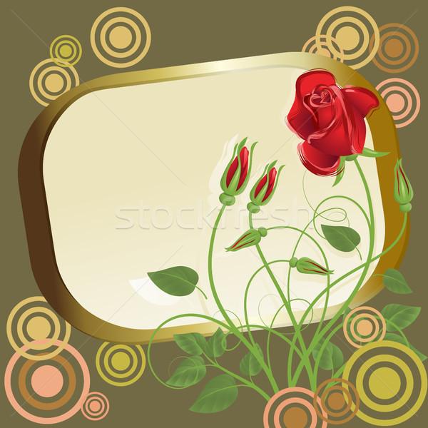 Altın çerçeve soyut güller kırmızı gül circles Stok fotoğraf © ElenaShow