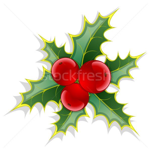Noel kırmızı meyve yeşil yaprakları dizayn yaprak Stok fotoğraf © ElenaShow