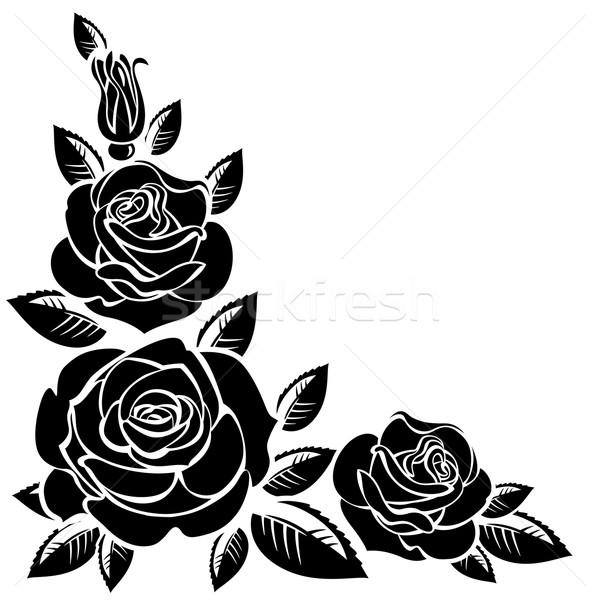 Branche roses blanche fleur rose fleur Photo stock © ElenaShow