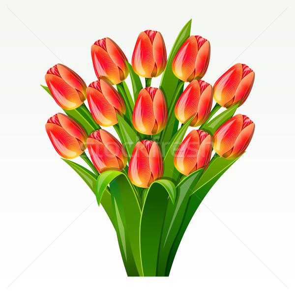 Bouquet rosso tulipani fiore bellezza Foto d'archivio © ElenaShow