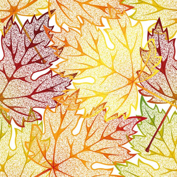 Autumn leaves Stock photo © ElenaShow