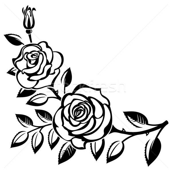 Ramo rosas branco flor rosa flor Foto stock © ElenaShow