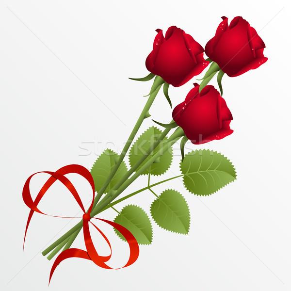 Güller üç kırmızı gül beyaz gül arka plan Stok fotoğraf © ElenaShow