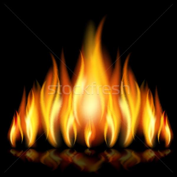 Fiamma fiamme diverso forme nero eps10 Foto d'archivio © ElenaShow