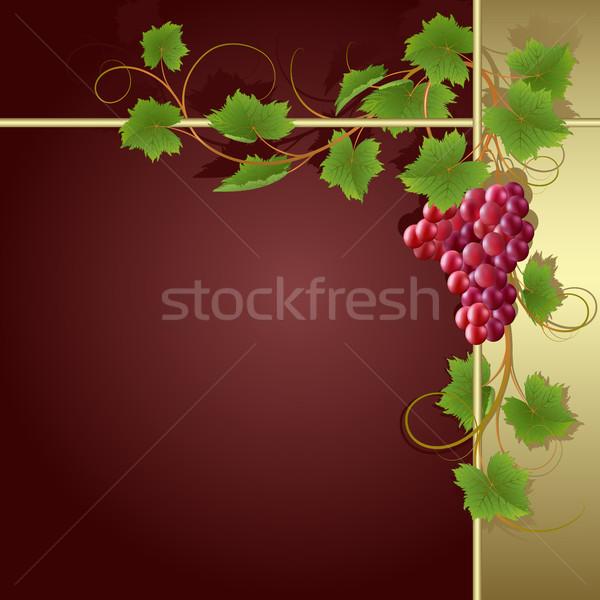 Background with vine Stock photo © ElenaShow