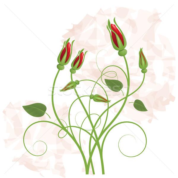 Buket kırmızı gül dizayn yaprak yeşil kırmızı Stok fotoğraf © ElenaShow