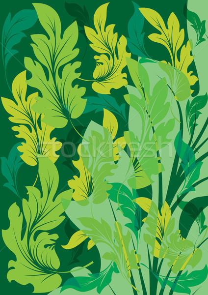 été feuilles vertes vert laisse fond cadre Photo stock © ElenaShow