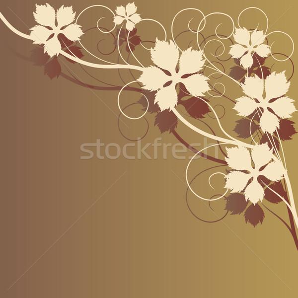 ブラウン テクスチャ 背景 植物 農業 ストックフォト © ElenaShow