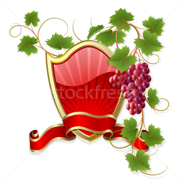 Frame with vine Stock photo © ElenaShow