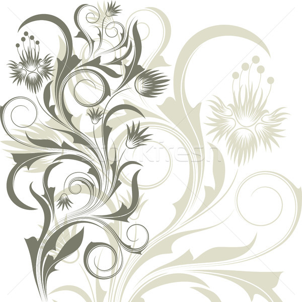 Fleurs blanches blanche résumé gris branche fleurs Photo stock © ElenaShow