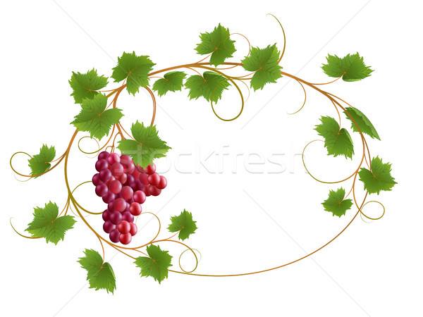 Vite rosso bianco natura frutta frame Foto d'archivio © ElenaShow