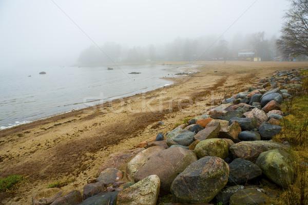 Misty mattina piovosa spiaggia presto primavera Foto d'archivio © ElinaManninen
