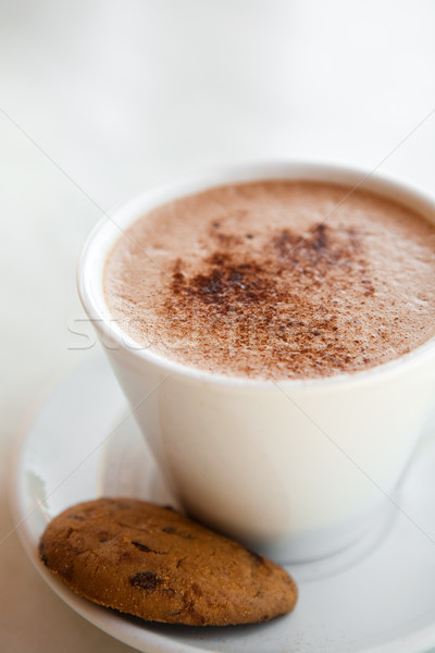 Gorąca czekolada kubek czekolady suchar kawy Zdjęcia stock © ElinaManninen