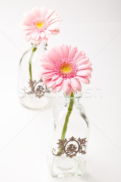 цветы красивой свежие Пасху весны Сток-фото © ElinaManninen