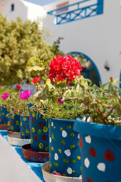 Santorini Görögország színes virág nyár kék Stock fotó © ElinaManninen